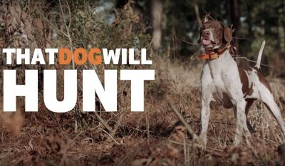 That Dog Will Hunt