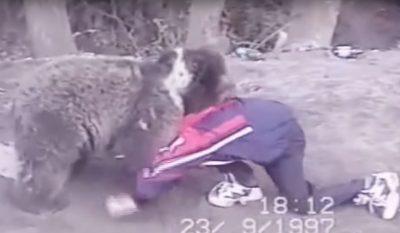 Khabib Nurmagomedov Bear Wrestling