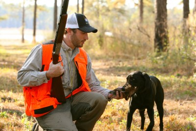 hunting dog breeds | OutdoorHub