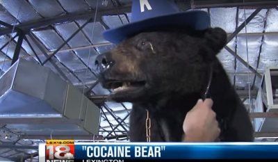 Kentucky's Cocaine Bear